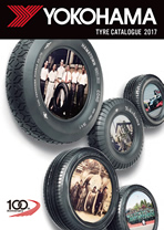 Passenger Car Tire  Catalogue  Asia & Oceania(Revised)