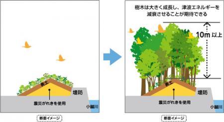 ■「いのちを守る森の防潮堤」イメージ