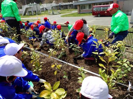 大槌学園の生徒に植樹指導をする横浜ゴムスタッフ