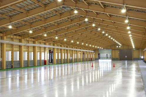 Ice track of interior